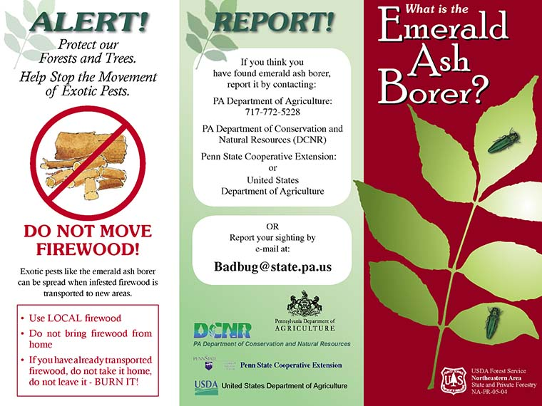 US Forest Service Fact Sheet